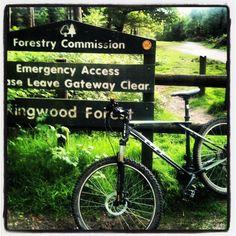 Ringwood Forrest, Sigletrack.