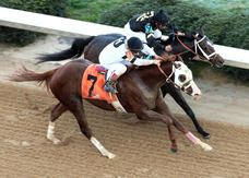 """Will Take Charge edges Oxbow to give Lukas Rebel exacta    Willis D. Horton's Will Take Charge caught stablemate Oxbow in deep stretch and posted a head decision in Saturday's Grade 2, $600,000 Rebel at Oaklawn Park, providing Hall of Fame trainer D. Wayne Lukas with a one-two  finish in the 1 1/16-mile event.    """"I felt pretty good 100 yards from the wire,"""" the four-time Kentucky Derby-winning conditioner said."""
