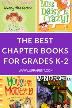 Chapter books for 1st grade boy