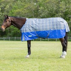 Plaid Lovers Will Love These New Weatherbeeta Turnout Blankets