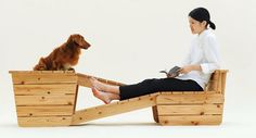 Barkitecture for Long-Bodied Short-Legged Dogs