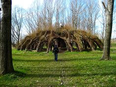 8 Extraordinary Pieces of Architecture Grown From Living Trees | Atlas Obscura