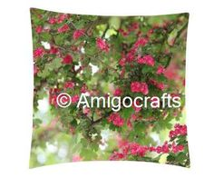 Summer Floral Cushion cover& Fillers