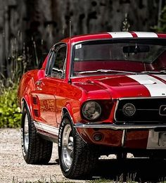 Who doesn't like oldschool mustangs? Like really, sure it's a ford but you could always swap the engine for a chev :P lol