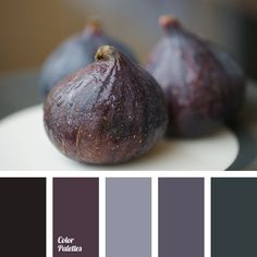 black and burgundy, black and gray, black and green, black and violet, color of fig, gray and black, gray and green, gray and violet, green and black, green and gray, green and violet, violet and black, violet and burgundy, violet and gray, violet and green.