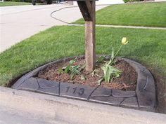 mailbox w/ stamped concrete border