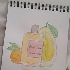 ATELIER COLOGNE - POMÉLO PARADIS #perfume #perfumy #fragrance #scent #illustration #doodle #watercolor #ateliercologne seeandsmell.pl