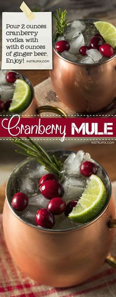 Christmas Cranberry Moscow Mule Recipe | 6 easy holiday cocktail recipes using just 2 ingredients! All made with alcohol for adults. These drinks are perfect for Christmas or Thanksgiving, and super easy for a crowd. A variety of whiskey, vodka and wine. Instrupix.com