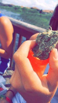 Cannabis Shop, Medical Marijuana, Rauch Fotografie, Smoke Photography, Smoke Pictures, Weed Art, Stoner Girl, Smoke Weed, Herbs