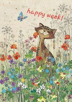 HAPPY WEEK!