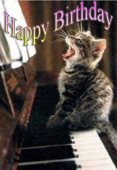 63 Super Ideas For Funny Happy Birthday Husband Christmas Happy Birthday Piano, Funny Happy Birthday Images, Happy Birthday Husband, Singing Happy Birthday, Happy Birthday Greetings Friends, Funny Happy Birthday Wishes, Funny Birthday, Birthdays, Cat Sitting