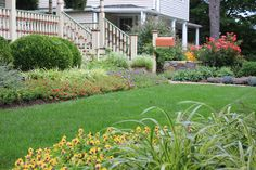 Front yard landscape for a historic house.