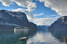 MV Britannia departs Aurland Art Prints For Sale, Fine Art Prints, Countries To Visit, Cruise Ships, Norway, Travel Photography, In This Moment, Landscape, World