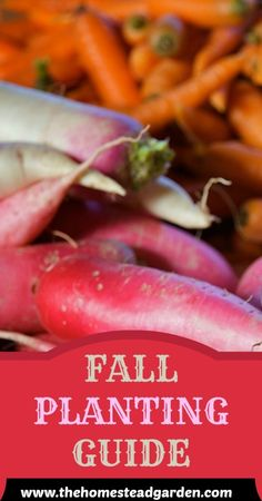 Learn what to plant in the fall for your #garden!