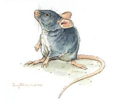 Original Watercolor & Pencil Painting of a Mouse,