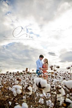 lindsey mills photography | engagement | cotton field | farm