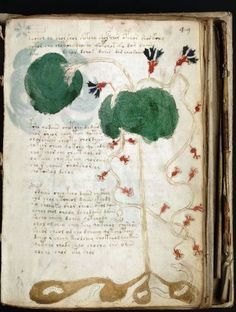 """The Centered Librarian: An update on """"The World's Most Mysterious Book"""" - early Renaissance"""