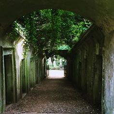 Highgate West Cemetery | 17 Creepy London Walks You Must Take