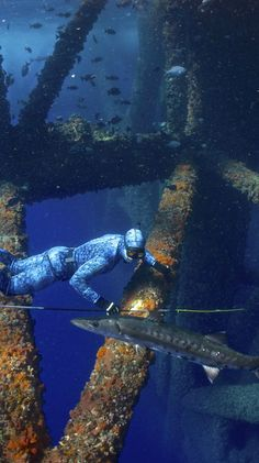 Go freediving through oil rigs in the Gulf of Mexico.