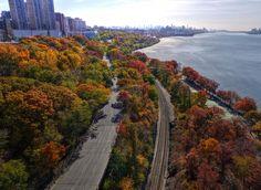 Autumn day in Manhattan. Photo by b k.