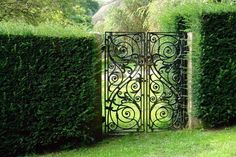 Google Image Result for http://us.123rf.com/400wm/400/400/ronyzmbow/ronyzmbow1109/ronyzmbow110900013/10532468-classical-design-black-wrought-iron-gate-in-a-beautiful-green-garden.jpg