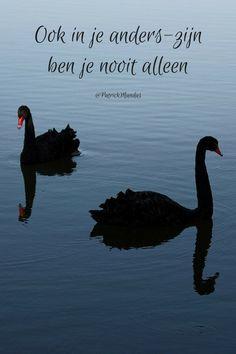 Ook in je anders-zijn ben je nooit alleen...