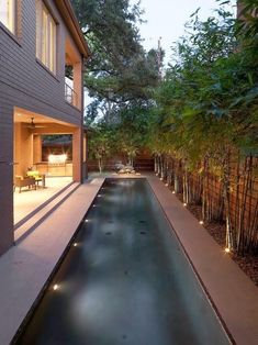 Making a good use of a small courtyard with lush landscaping, lap pool and beautiful landscape lighting. Making a good use of a small courtyard with lush landscaping, lap pool and beautiful landscape lighting. Landscape Lighting, Outdoor Lighting, Lighting Ideas, Lighting Design, Pathway Lighting, Accent Lighting, Piscina Interior, Moderne Pools, Lap Swimming
