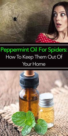 As far as possible, this post will concentrate on pest control tips that would assist keep away as much pests as you can. Some of the advises provided here will deal on specific pests but some may … Bug Control, Pest Control, Organic Soil, Organic Gardening, Gardening Tips, Balcony Gardening, Vegetable Gardening, Garden Landscaping, Peppermint Oil For Spiders