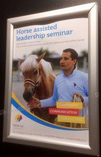 2017 - Horse Eye - Horse Assisted Leadership