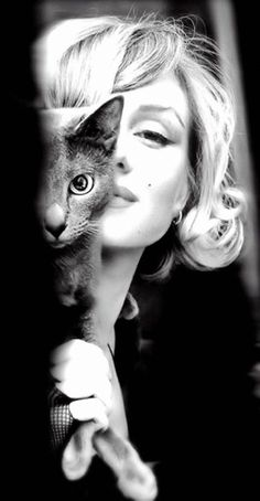 Marilyn (1926–1962) with cat friend #famous_people #vintagephoto