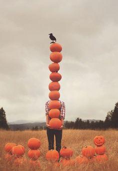 Halloween chegando...