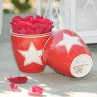 GreenGate Star red Mini Latte Kop    *** Hos www.galleri-hebe.dk køber og sælger vi en hel del Greengate - en af de elskede produkter i vores shop :) Se et lille udvalg her - Find det aktuelle udvalg på www.galleri-Hebe.dk