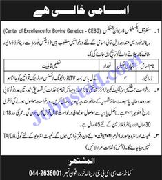 Jobs Description Govt Jobs in Renala Khurd 2021 at Centre of Excellence for Bovine Genetics has been announced through the advertisement and applications from the suitable persons are invited on the prescribed application form. In these Latest Civilian Jobs in Pak Army the eligible Male/Female candidates from across the country can apply through the procedure ... Read more The post Govt Jobs in Renala Khurd 2021 at Centre of Excellence for Bovine Genetics appeared first on JobUstad.