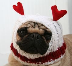 The only way this could be cuter is if it were on Minka!    Dog Hat  All You Need Is Love Hat by jessicalynneart on Etsy, $22.00