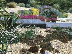 Coastal-Style Gardens and Landscapes : Outdoors : HGTV  I want all low maintenance perennials that come up every year. Love this.