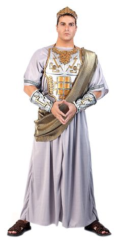 Greek Zeus Men Costume - Zeus Was the Presiding God Over the Greek Olympian Pantheon. Zeus Greek Men Costume Includes Grey Toga, Drape, Decorative Chest Plate, Two Arm Guards with Lightning Bolt & Symbols. Zeus Costume, Poseidon Costume, Greek God Costume, Toga Costume, Costume Shop, Greek Costumes, Roman Costumes, Clever Halloween Costumes, Creative Costumes