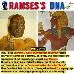 History Discover Ancient Egyptian Art Ancient History African Culture African American History Egyptian Kings And Queens Interesting Facts About World Kemet Egypt Black History Facts Ramses