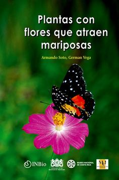 Plantas nectariferas. A great resources for discovering and ID-ing tropical flowering plants that attract butterflies. Includes colored pictures!