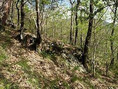 Túmulo en la ladera de un monte rodeado de antiguas fajas de cultivo.