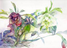 Watercolor Flowers, Watercolour, Watercolor Paintings, Illustration Art, Birds, Drawings, Beauty, Flowers, Painting Art