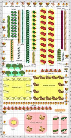 Garden Plan - 2013: garden 2nd plan.  LOVE the flowers!