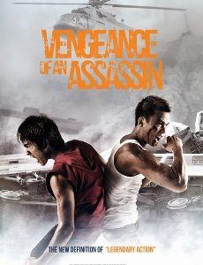 Vengeance of an Assassin 2014 DVDRip 350MB