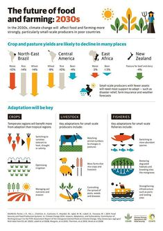 Infographic: The Impact of Climate Change on the Future of Farming | foodmanufacturing.com