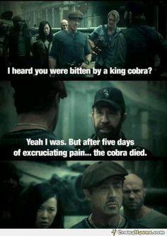 Chuck Norris makes a Chuck Norris joke. Expendables 2 = Epic.