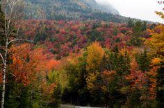 New Hampshire Fall Color 8