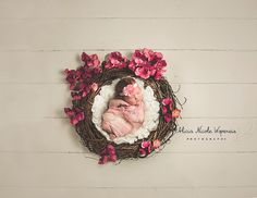 One JPEG high resolution digital photography prop/backdrop. Using photoshop or lightroom, you can add in any newborn image youve taken to this