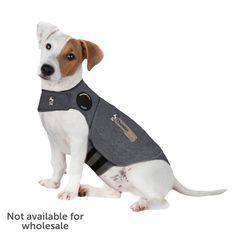 ThunderEase for Dogs - Calming Spray – ThunderShirt Dog Separation Anxiety, Dog Anxiety, Anxiety Help, Social Anxiety, Jack Russel, Dog Training Classes, Dog Dental Care, Grey Dog, Dog Jacket