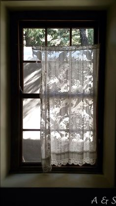 Beautiful lace curtain with bird motive