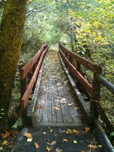 A trail  to hike in southern oregon
