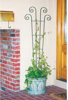 Panacea Products Planter Steel Fan Trellis Use your vertical space to grow beautiful flowers! Cheap Pergola, Backyard Pergola, Pergola Plans, Pergola Kits, Pergola Ideas, Balcony Ideas, Patio Roof, Balcony Planters, Hanging Planters